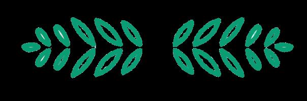 leaves representing vegan